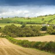 Reform of statutory repairing obligations (model clauses) of agricultural tenancies