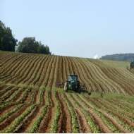 Five-year growth for UK farmland forecast to outperform the traditional alternatives
