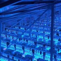 Savills identificeert Nederland als aantrekkelijke markt voor investeringen in datacenters