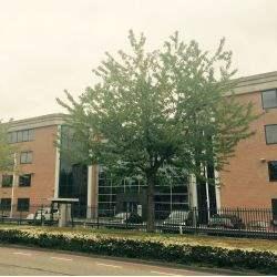 Deloitte verlengt huurovereenkomst in Dynamic Center