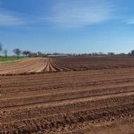 Scottish farmland market subdued, yet record prices for 'best in class'