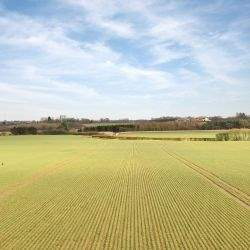 Well known Lincolnshire farm with significant commercial opportunities comes to the market